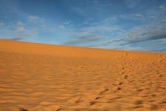 沙漠上升了 免版税库存图片