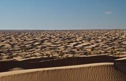 沙漠不尽的撒哈拉大沙漠 免版税库存图片