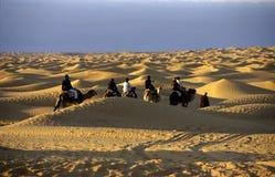 沙漠乘驾 库存图片
