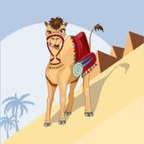 沙漠传染媒介例证的骄傲的骆驼有蓬卡车 库存图片