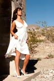 沙漠俏丽的妇女 库存图片