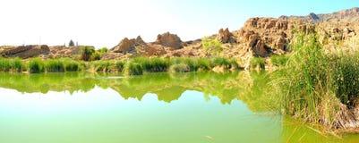 沙漠停滞全景的池塘 库存照片