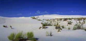 沙漠全景 图库摄影