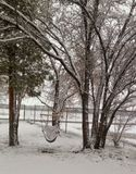 沙漠冬天雪 库存图片