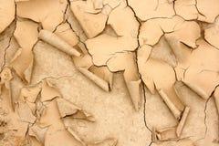沙漠化 免版税库存图片