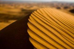 沙漠和沙丘在微明下 迪拜 库存照片