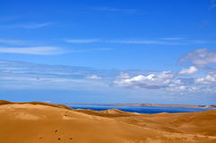 沙漠和湖 皇族释放例证
