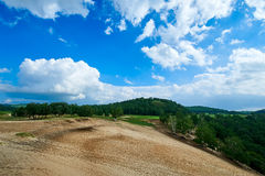 沙漠和cloudscape和森林 免版税库存照片