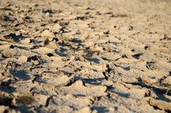沙漠土地 免版税库存图片