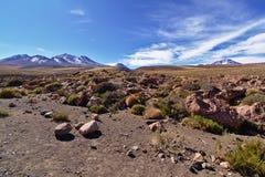 沙漠土地 图库摄影