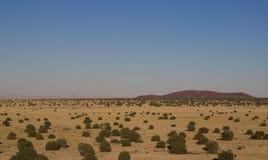沙漠土地 库存图片