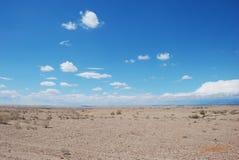 沙漠在新疆 免版税图库摄影