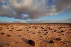 沙漠在西撒哈拉 免版税库存照片