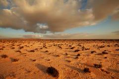 沙漠在西撒哈拉 图库摄影