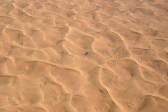 沙漠在阿拉伯联合酋长国迪拜 免版税图库摄影