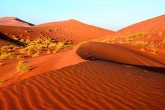 沙漠在阿曼 库存图片