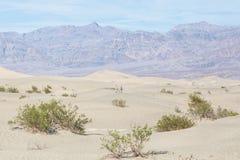 沙漠在死亡谷 免版税库存图片