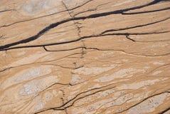 沙漠地形 免版税库存图片