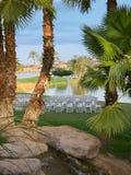 沙漠场面婚礼 免版税库存照片
