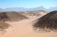 沙漠埃及 库存图片
