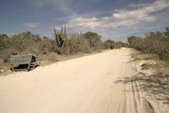 沙漠墨西哥 库存图片