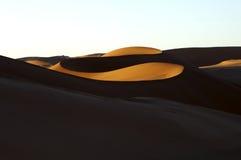 沙漠夜间 免版税库存图片