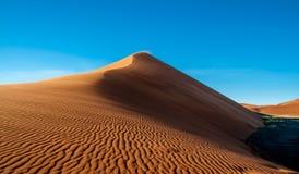 沙漠安心 免版税库存照片