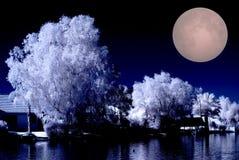 沙漠家庭湖月出 库存图片