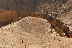沙漠山的小组徒步旅行者 库存图片