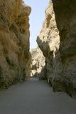 沙漠峡谷 免版税库存图片