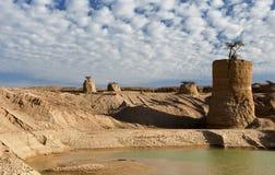 沙漠干燥以色列偏僻的negev结构树 免版税库存图片