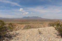 沙漠平原 免版税库存图片