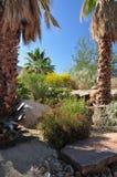 沙漠庭院 免版税库存图片