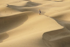 沙漠徒步旅行队 免版税图库摄影