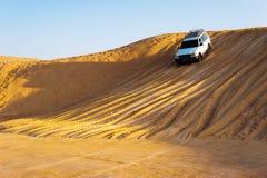沙漠徒步旅行队 免版税库存图片