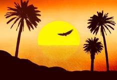 沙漠掌上型计算机红色日落 库存图片