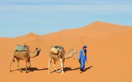 沙漠摩洛哥人场面 免版税图库摄影