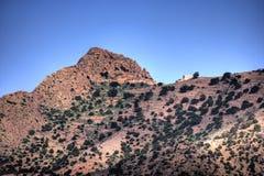 沙漠摩洛哥村庄 图库摄影