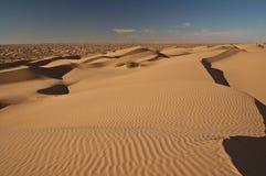 沙漠撒哈拉大沙漠沙子天空 库存图片