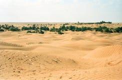 沙漠撒哈拉大沙漠突尼斯 库存照片