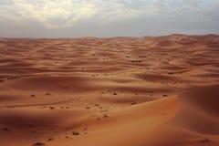 沙漠撒哈拉大沙漠 图库摄影