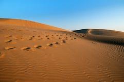 沙漠日出 免版税库存照片