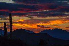 沙漠日落,亚利桑那全景  库存照片