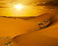 沙漠日落 库存照片