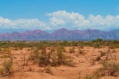 沙漠旱田和山在horizont 免版税库存照片