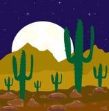 沙漠月亮晚上 免版税库存图片
