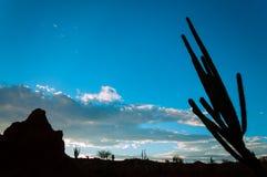 沙漠横向剪影 库存图片