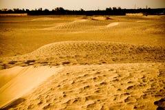 沙漠横向 图库摄影
