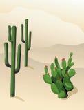 沙漠横向 向量例证