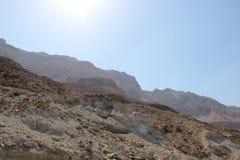 沙漠死海视图  库存图片